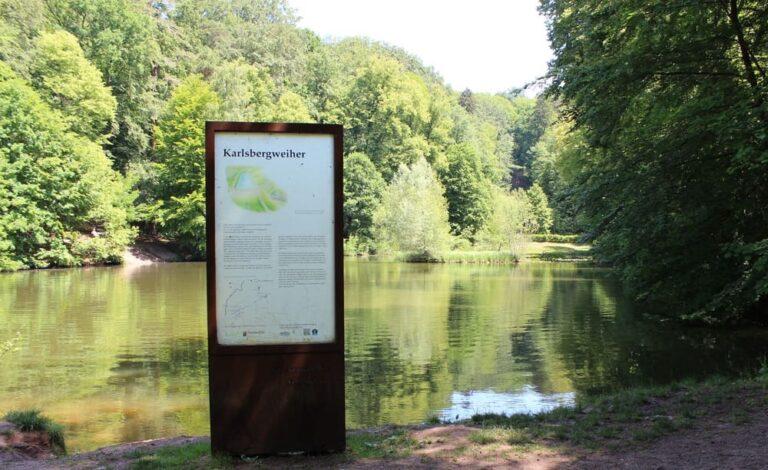 Stiftung_Karlsberger_Hof_Gemälde_Karlsbergweiher